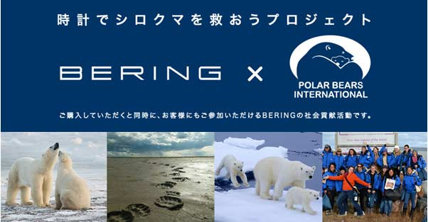 bering_polar_bears_internat